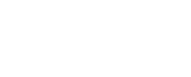 Profipaint